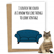 couch_card_website_pics